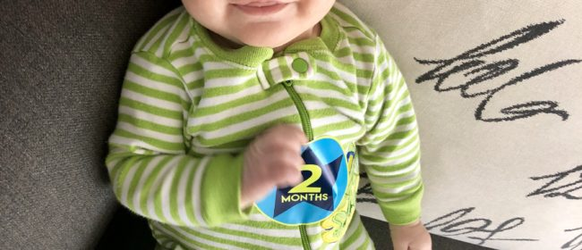 Logan – 2 Month Update
